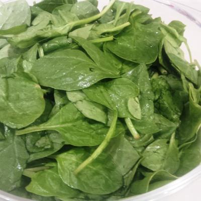 Spinach 1.jpg