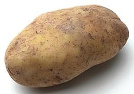 russet_potato