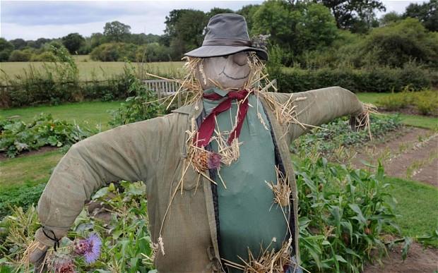 scarecrow_2361807b