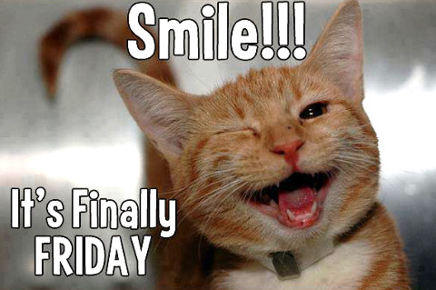 smile-friday-lolcat