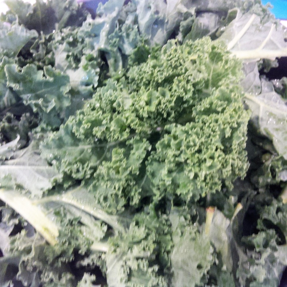 mangold and kale 2 (2).jpg