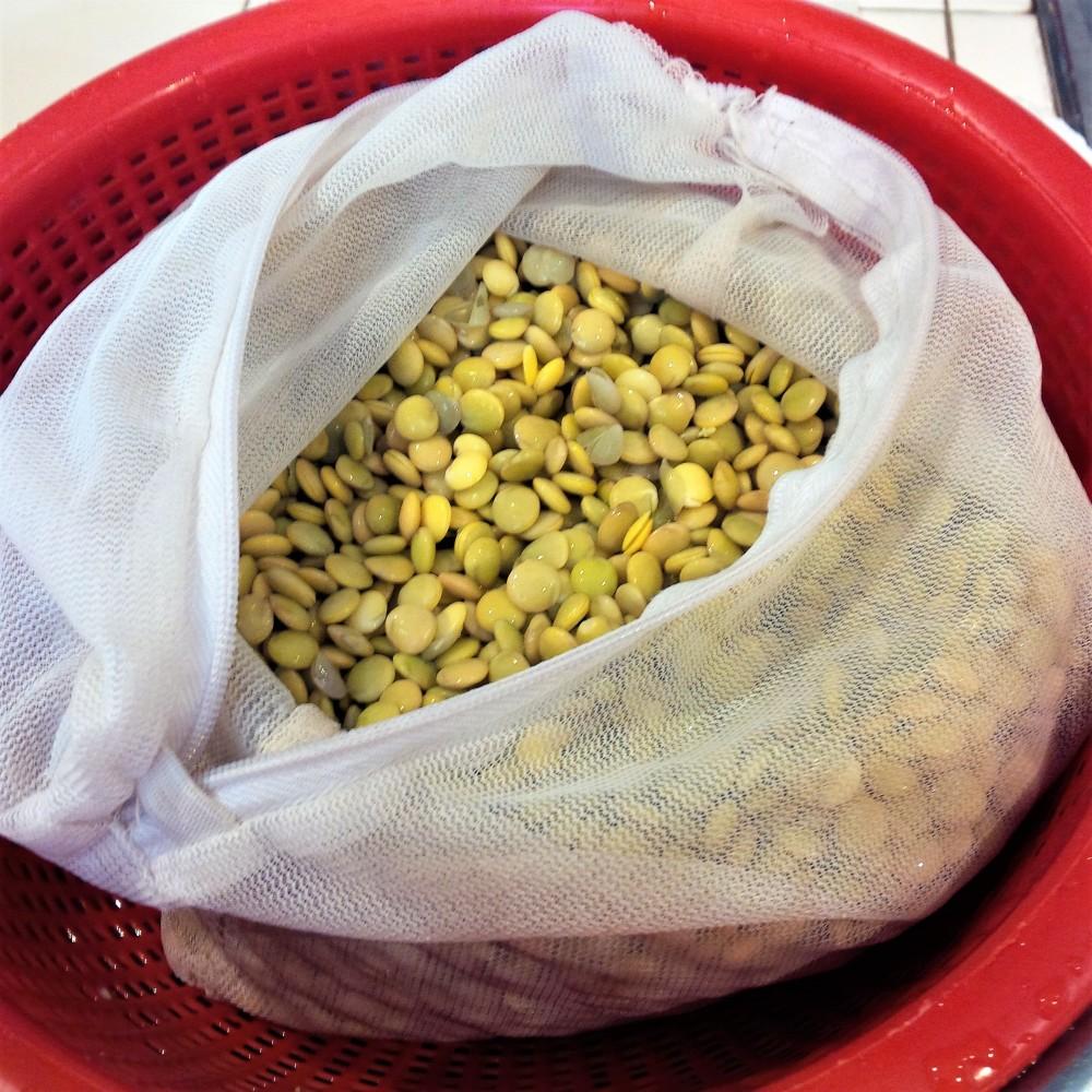 soaking lentils 3.jpg