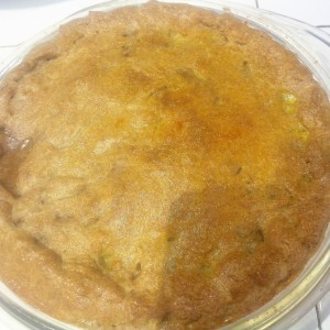 Fish Pot Pie fin